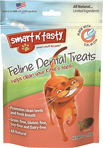 Smart n' Tasty Cat Salmon Dental Grain Free Treats.jpg