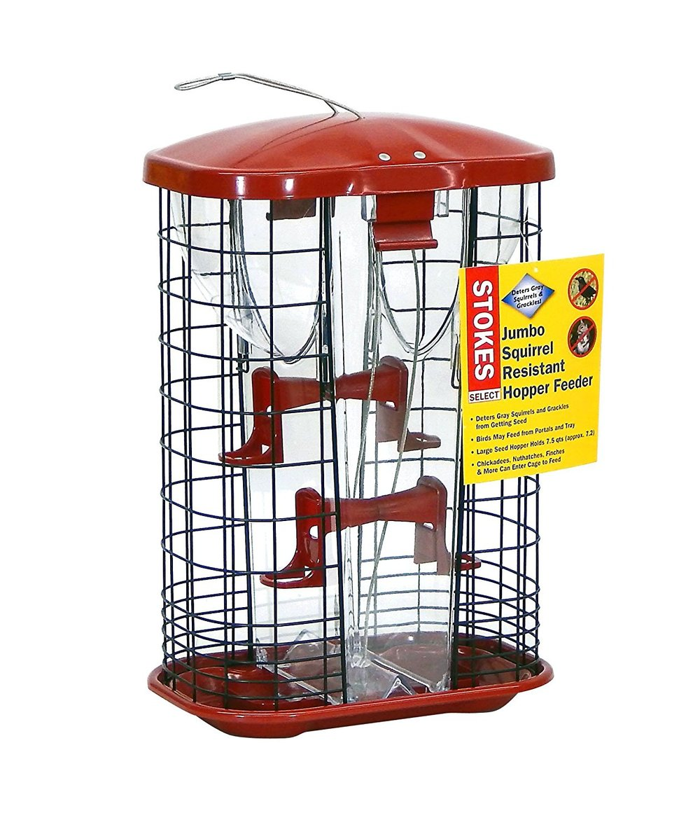 STOKES JUMBO SQUIRREL RESISTANT HOPPER FEEDER.jpg