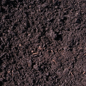Compost Soil Builder