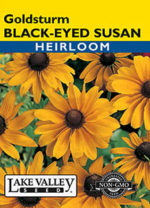 050-Black-Eyed-Susan-Goldsturm-web-thumb-150x208.jpg