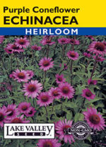 099-Echinacea-Purple-Coneflower-web-thumb-150x208.jpg