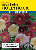 156-Hollyhock-Indian-Spring-web-thumb-150x208.jpg