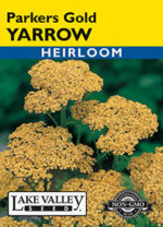 324-Yarrow-Parkers-Gold-web-thumb-150x208.jpg