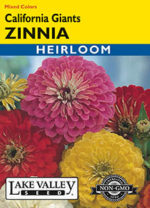 326-Zinnia-California-Giants-web-thumb-150x208.jpg