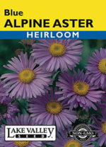 423-Aster-Blue-Alpine-web-thumb-150x208.jpg
