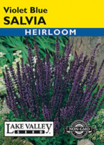 459-Salvia-Violet-Blue-web-thumb-150x208.jpg