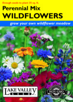 1683-Wildflowers-Perennial-Mix-300-thumb-150x208.jpg