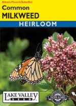 4361-Milkweed-Common-thumb-150x208.jpg