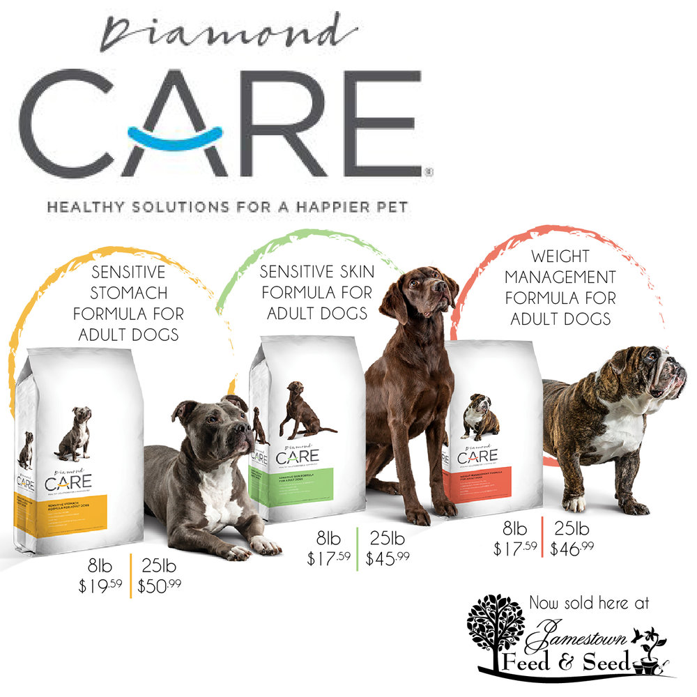 Diamond_Care_pet_food ad-01.jpg