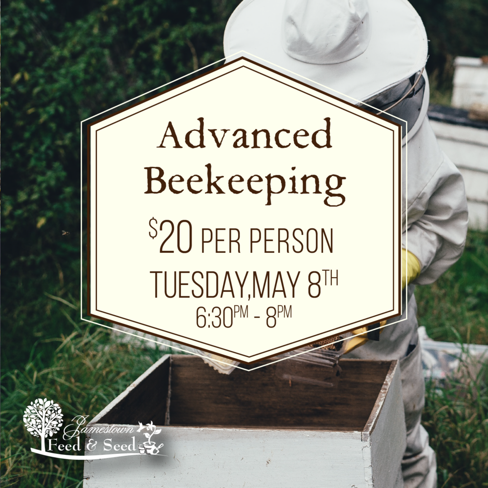 advanced beekeeping-01.png