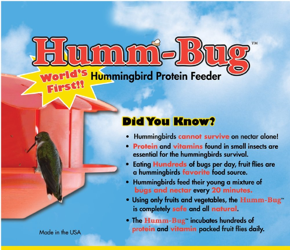 humm-bug feeder ad-01.jpg