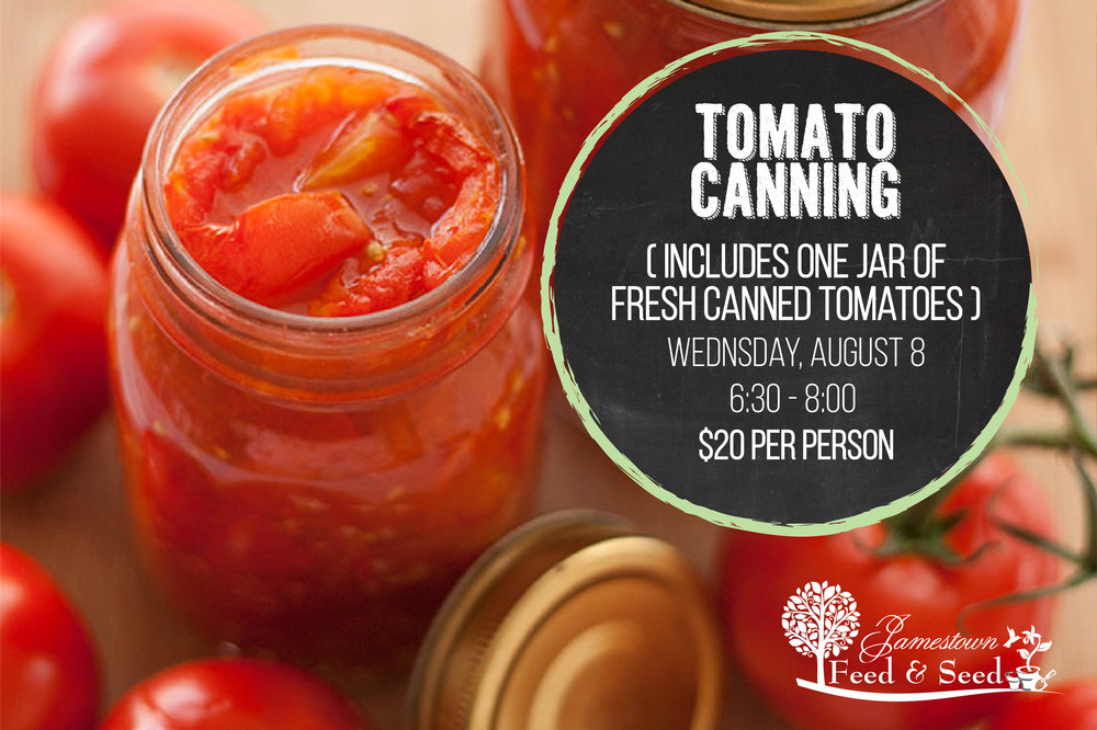 can-tomatoes-01.jpg