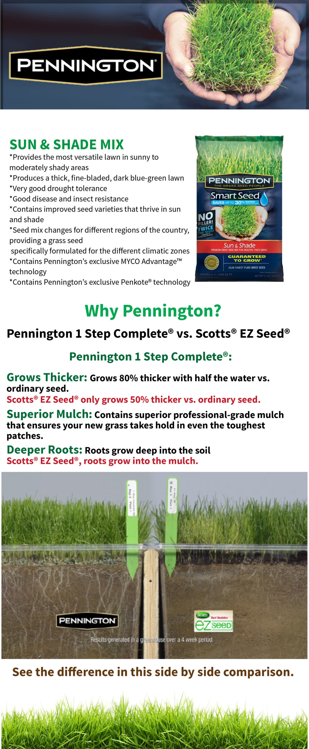pennington+web+page2.jpg
