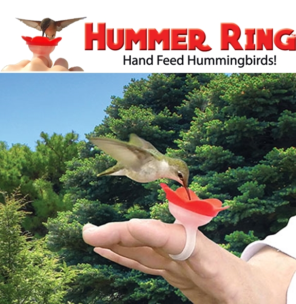 20313_BE101-Hummer-Ring-Handheld-Hummingbird-Feeder-750-3.jpg