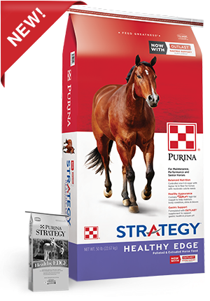 Product_Horse_Strategy_Healthy_Edge.png