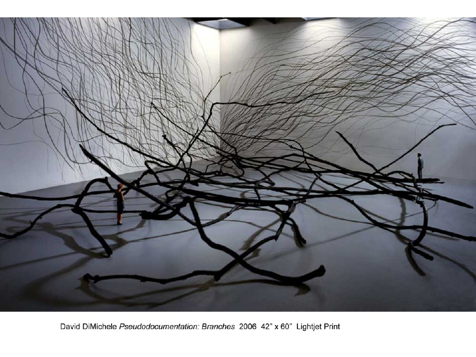 David DiMichele.pseudodocumentation, Branches 2006 lighjet print.jpg