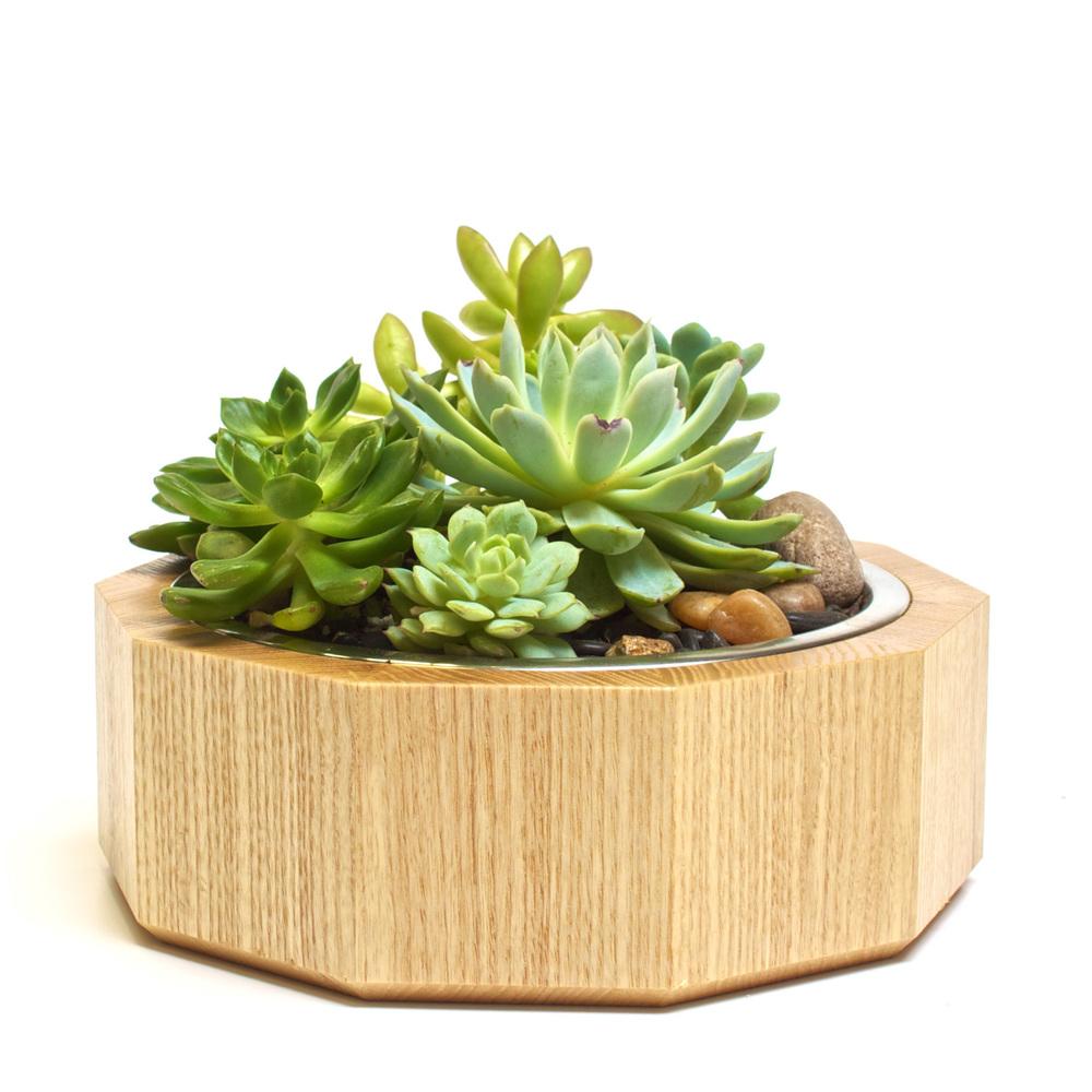 Sandbox Mojave - Ash