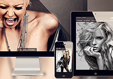 TALENTED WEB DESIGNERS WHO ABSOLUTELY LOVE WHAT THEY DO. FIND OUT MORE HERE >