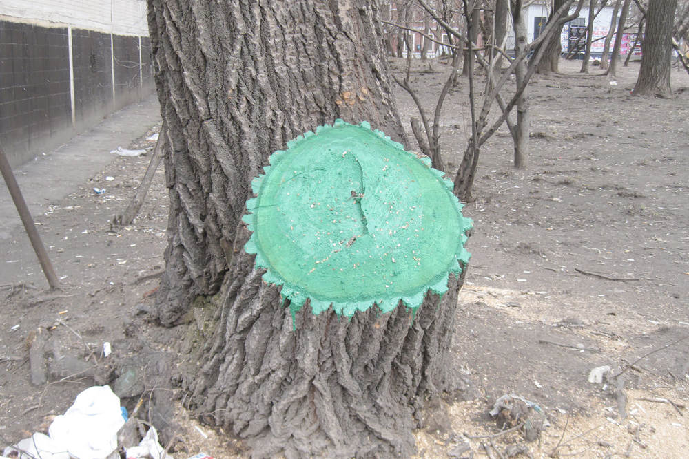 Tree Wound, Moscow