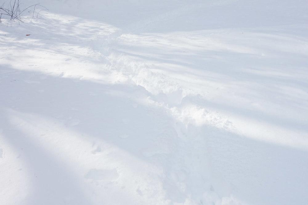 Snow Trail, Connecticut