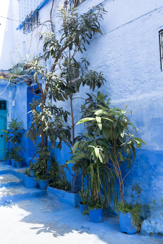 futuristphil_Morocco_4_20_2018_RXfull (273 of 434).jpg