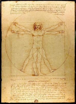 TheVitruvian Man(c.1485)Accademia, Venice