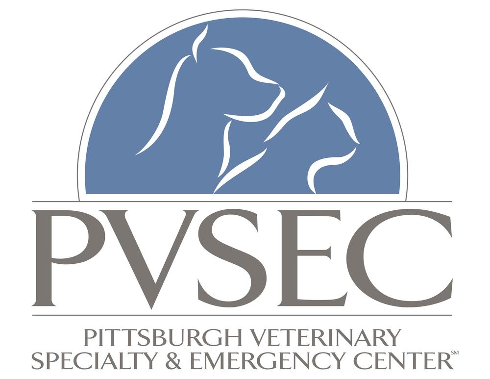 PVSEC Logo.JPG