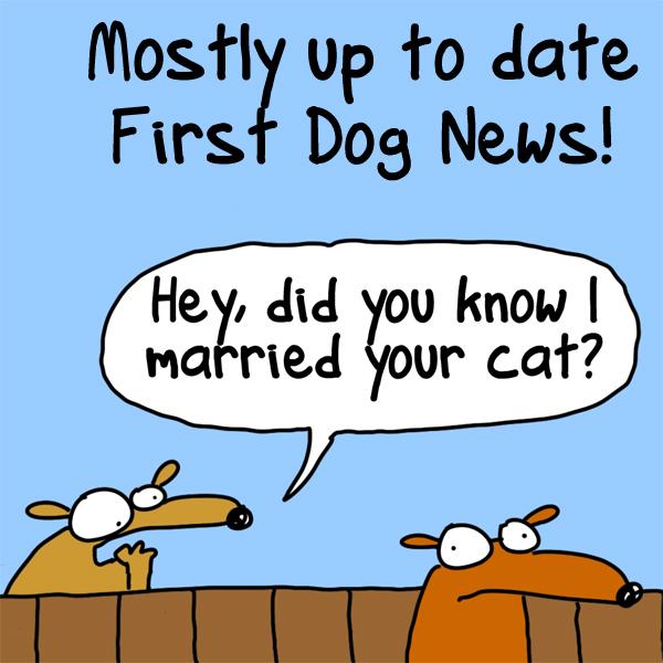 NEWSY NEWS!