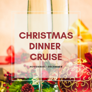 JOIN US FOR A FABULOUS CHRISTMAS DINNER CRUISE FEATURING WONDERFUL CHRISTMAS FARE WHILE YOU CELEBRATE THE CHRISTMAS SEASON WITH COLLEAGUES, FAMILY AND FRIENDS.