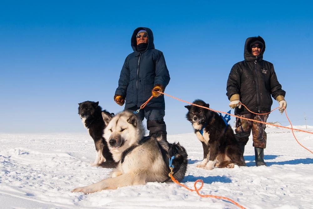 The Sled Masters - Puvirnituq, Nunavik, Canadian Arctic