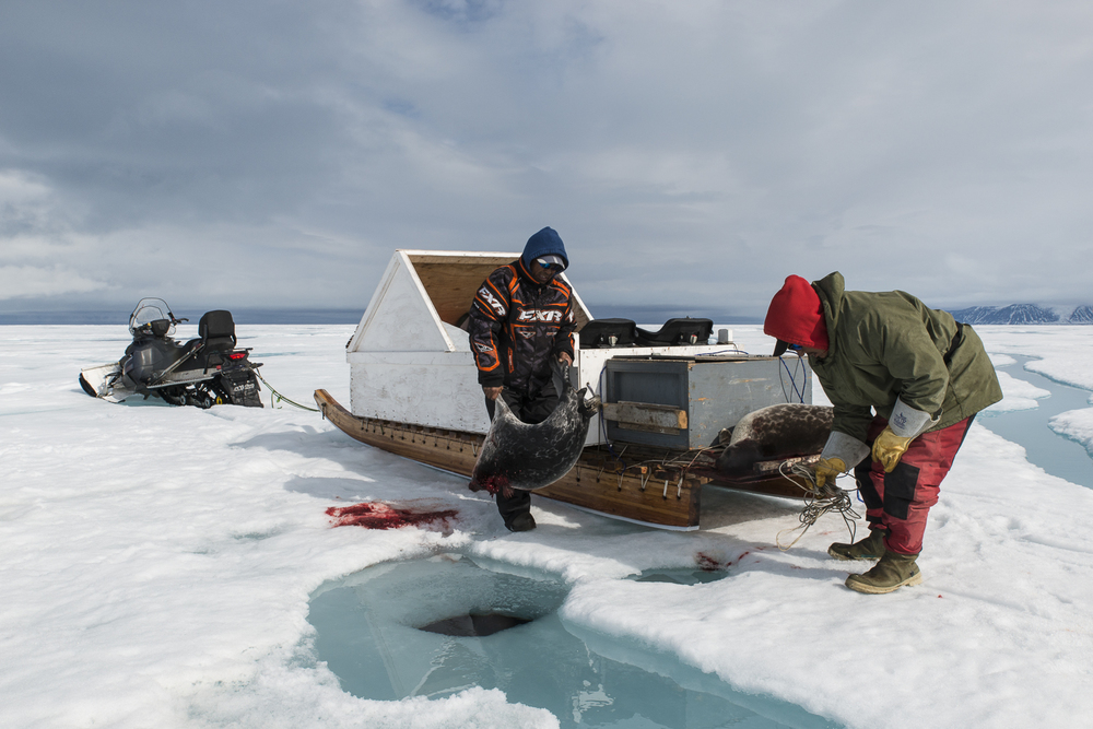 Inuit Hunters at the Seal Hole - Eclipse Sound, Nunavut, Canadian Arctic