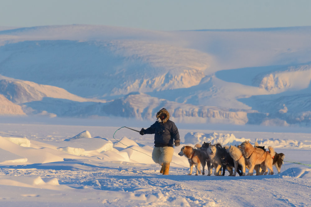 A Polar Inuit Hunter on the Sea Ice - Thule Region, Greenlansd