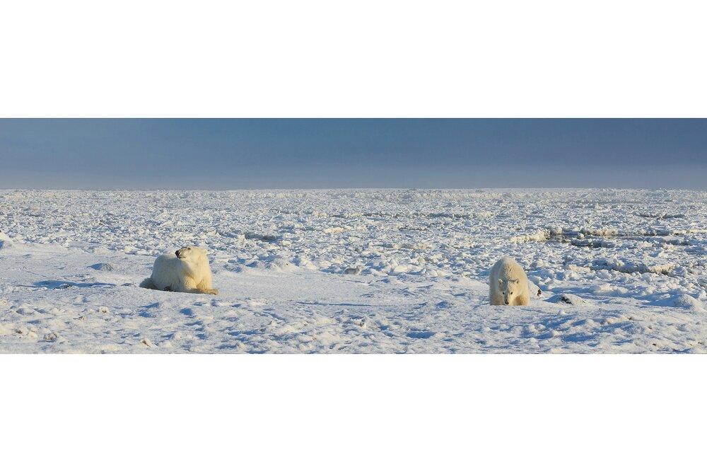 Left, Right, and Center - Hudson Bay Coast, Nunavut, Canadian Arctic