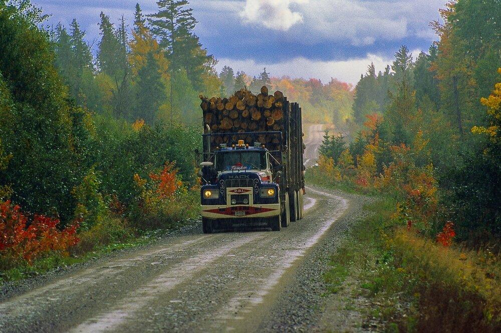 Logging Truck - Great North Woods, Maine