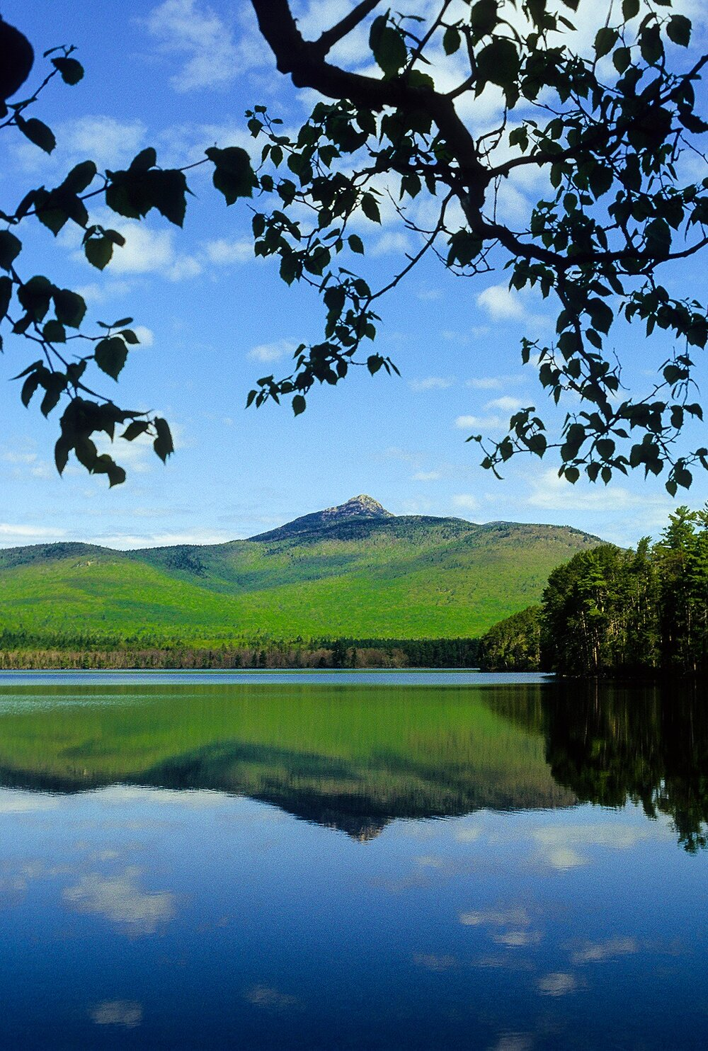 Chocorua Summer Day - White Mountain National Forest, New Hampshire