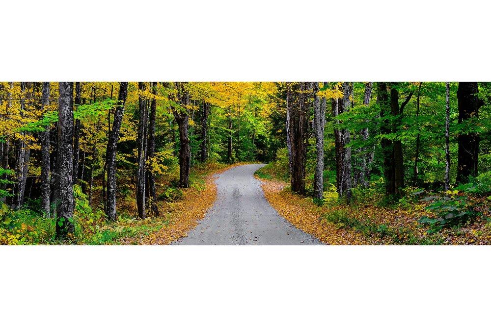 Cloudland Road in Autumn - Woodstock, Vermont
