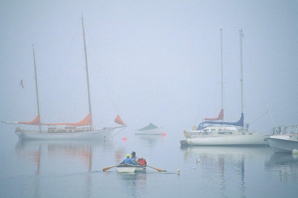 Maine Summer Morning - Winter Harbor, Maine