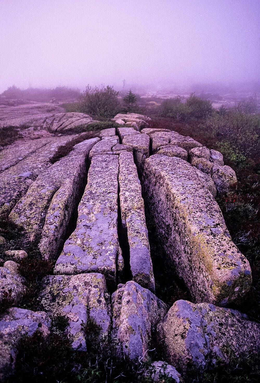 Pink Granite Glacial Striations - Acadia National Park, Maine