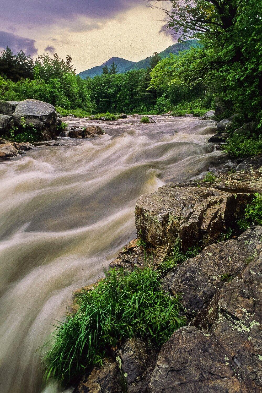 Forever Wild - Adirondack Mountains, New York