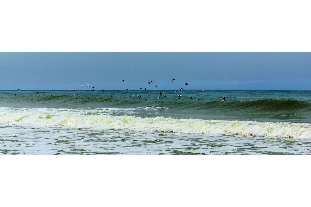 """All Good Things Are Wild And Free"" - Thoreau - Cape Cod National Seashore, Massachusetts"