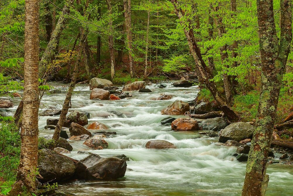 The Mad River in Springtime - Green Mountain National Forest, Vermont