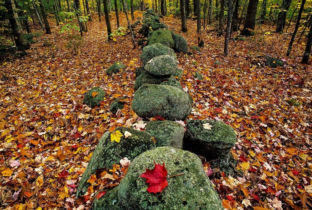 The Stone Fence - New Hampshire