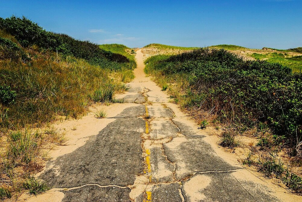Reclamation - Cape Cod national Seashore, Massachusetts-2.jpg