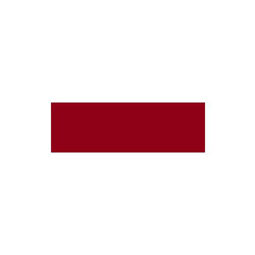 Año /  2018  Cliente  /   TANE    Fabricación  / México