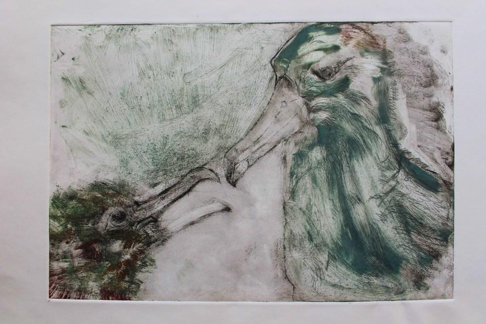 albatrossprint3.JPG