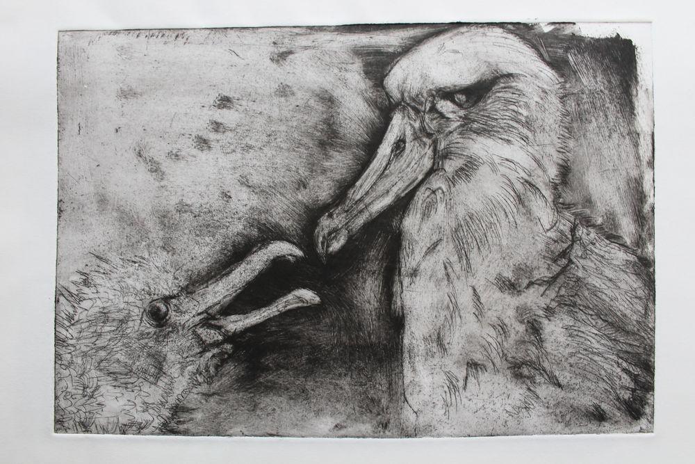 albatrossprint7.JPG