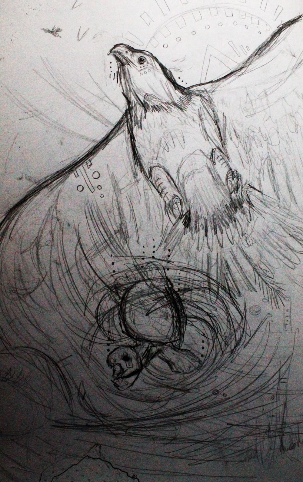 eagle-tortoise-sketch2.jpg.JPG