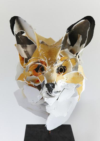 Fox  ©Anna-Wili Highfield  annawilihighfield.com