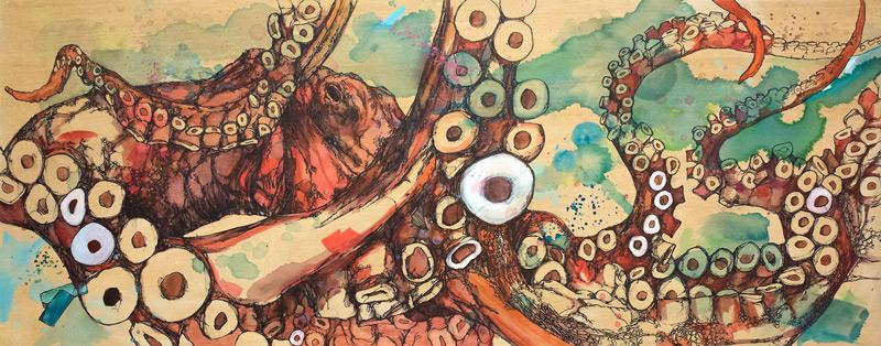 Octopus rubescens  © Jon Shaw  jonshawpaintings.com