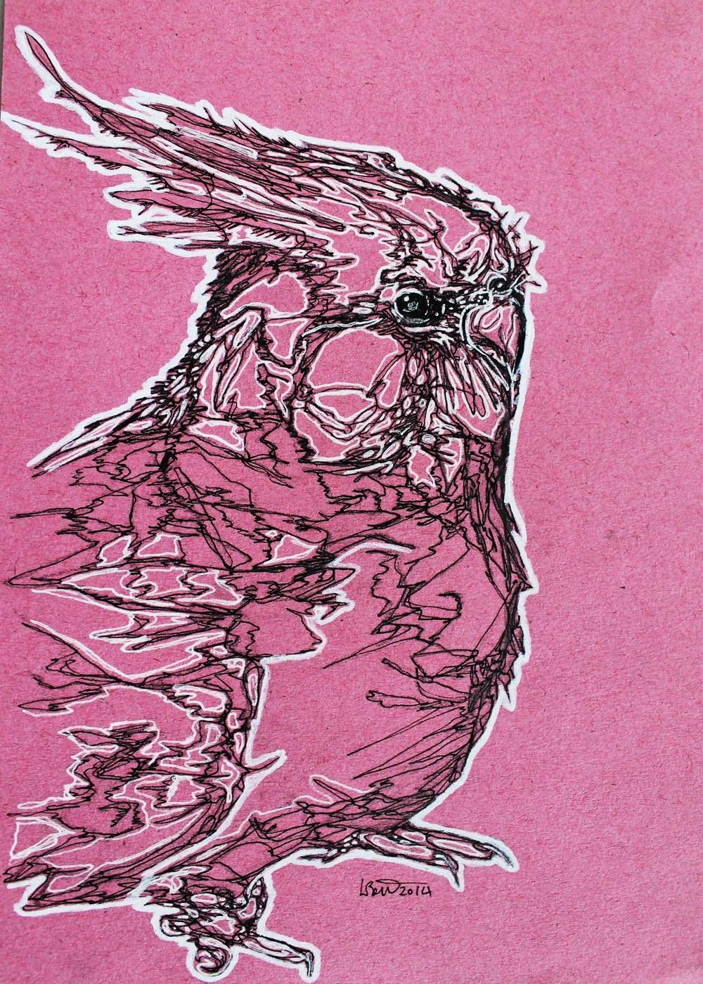 bird1.jpg.JPG